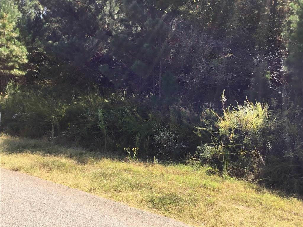168 Yellow Pine Drive - Photo 1