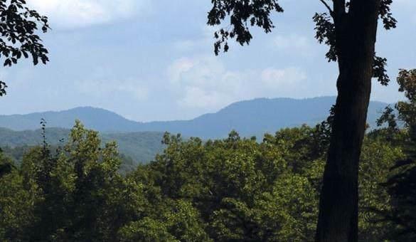 515 Augusta Links Trail, Travelers Rest, SC 29690 (MLS #20222398) :: Tri-County Properties at KW Lake Region