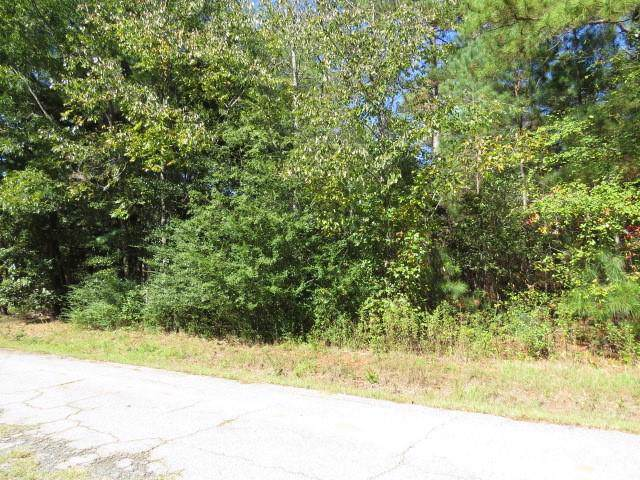 0 Mcneely Road, Liberty, SC 29657 (MLS #20222402) :: The Powell Group