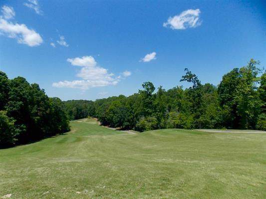 Lot 236 Chickasaw Drive, Westminster, SC 29693 (MLS #20222580) :: Tri-County Properties at KW Lake Region