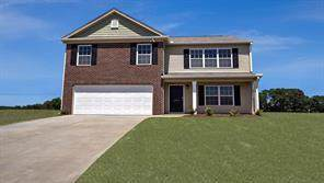 238 Hillendale Way, Pelzer, SC 29669 (MLS #20223443) :: The Powell Group