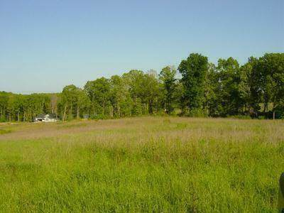 Lot 6 Arrowhead Lake Trail, Westminster, SC 29693 (MLS #20223643) :: The Powell Group