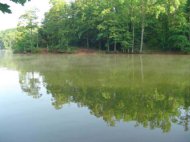 296 Oconee Avenue, Westminster, SC 29693 (MLS #20224777) :: Tri-County Properties at KW Lake Region