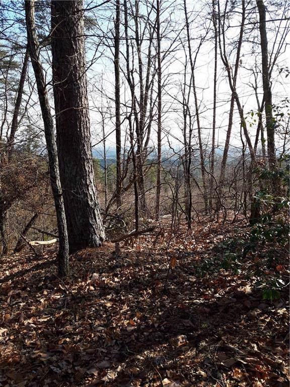 284 Jocassee Ridge Way, Salem, SC 29676 (MLS #20225068) :: Tri-County Properties at KW Lake Region