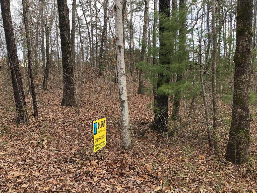 Lot 33 Den Ridge Drive - Photo 1