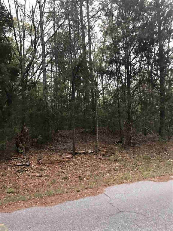 Lot 23 Saluda Road, Williamston, SC 29697 (MLS #20230881) :: The Powell Group