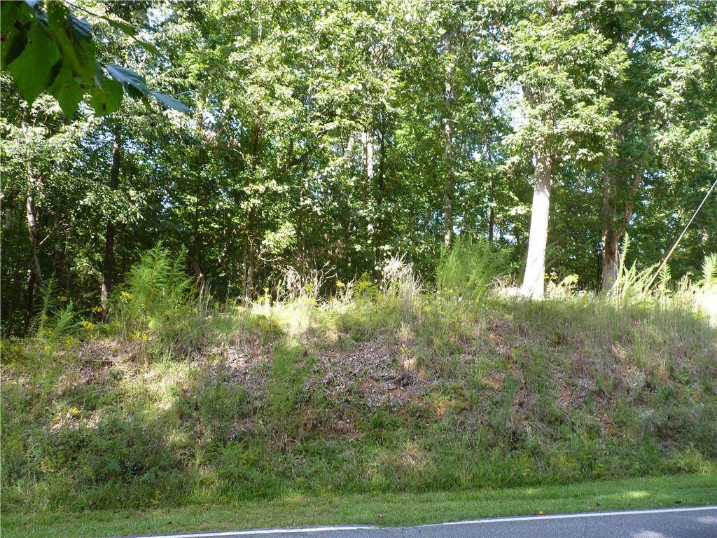 Lot 787 South Hogan Drive - Photo 1