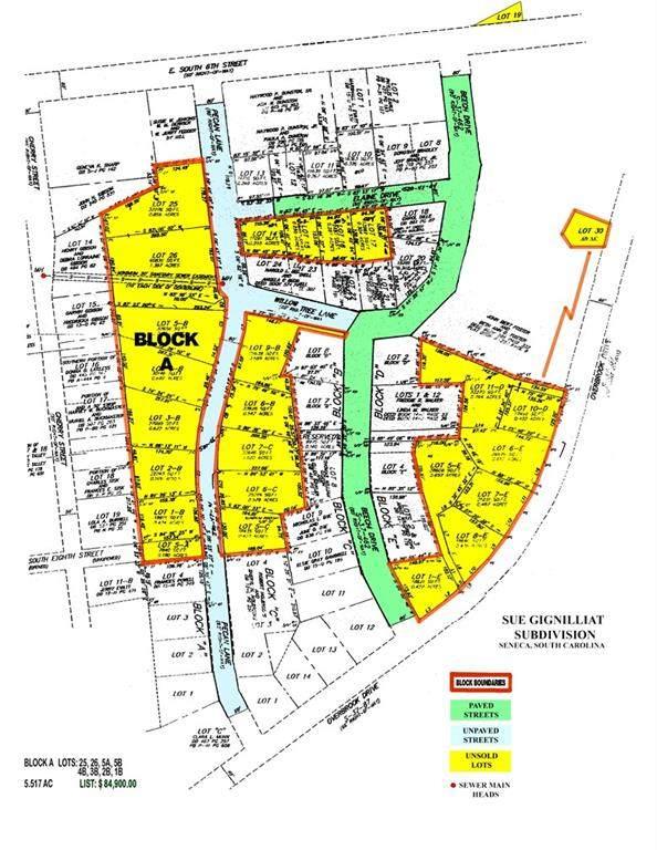 000 Pecan Street, Seneca, SC 29678 (MLS #20232581) :: Tri-County Properties at KW Lake Region