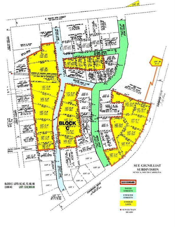 000 Pecan Street, Seneca, SC 29678 (MLS #20232584) :: Tri-County Properties at KW Lake Region