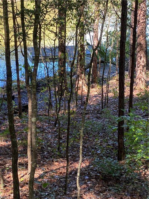 105 Dobson Cove Road, Seneca, SC 29678 (MLS #20233054) :: Les Walden Real Estate