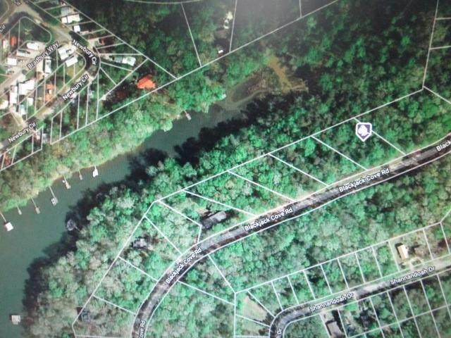 Lot 6 Black Jack Cove Road, Westminster, SC 29693 (MLS #20234153) :: The Powell Group
