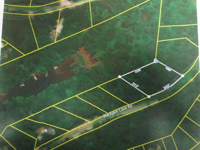 Lot 7 Black Jack Cove Road, Westminster, SC 29693 (MLS #20234223) :: The Powell Group