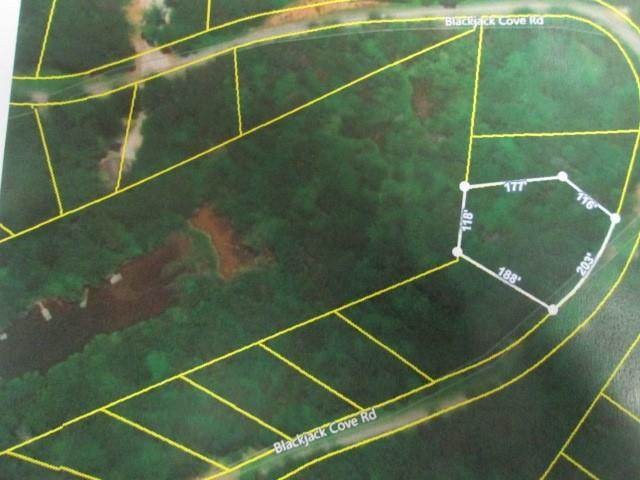Lot 8b Black Jack Cove Road, Westminster, SC 29693 (MLS #20234227) :: The Powell Group