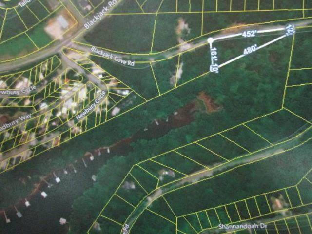 Lot 10 Black Jack Cove Road, Westminster, SC 29693 (MLS #20234229) :: The Powell Group