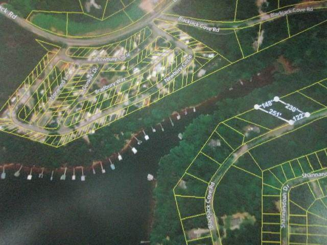 Lot 4 Black Jack Cove Road, Westminster, SC 29693 (MLS #20234231) :: The Powell Group