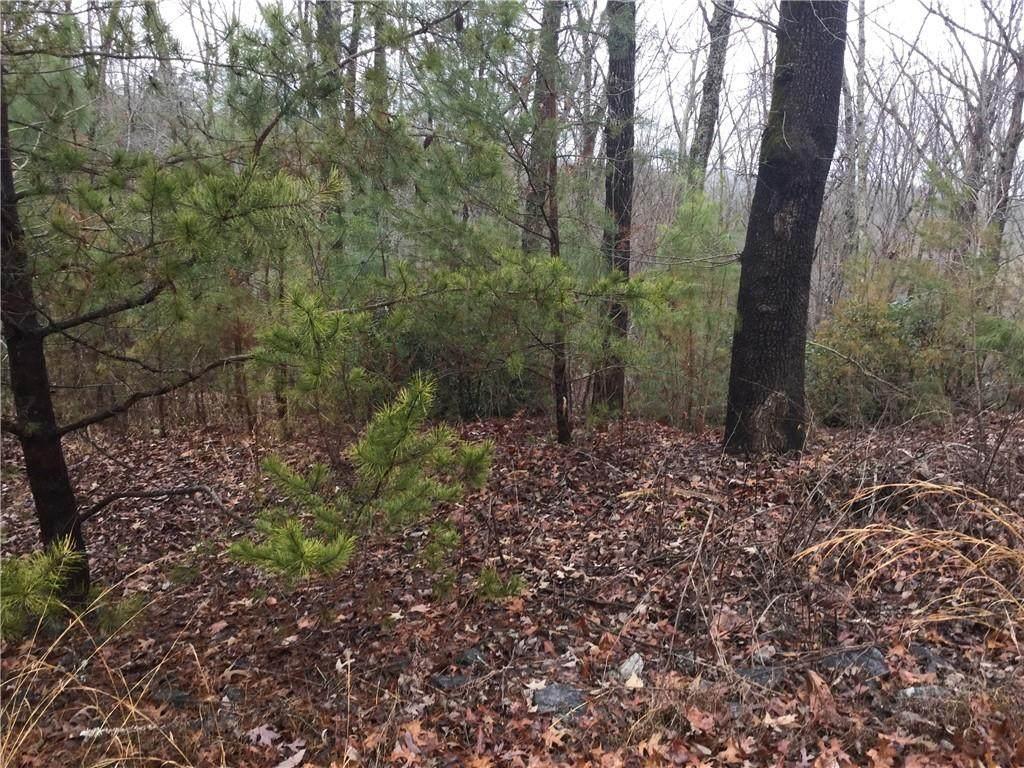 Lot N-56 Hidden Branch Trail - Photo 1