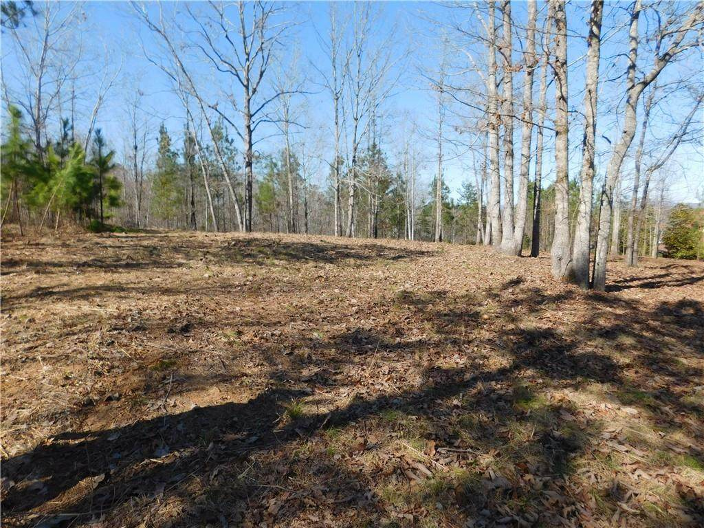 JC5 Eagle's Bend Trail - Photo 1