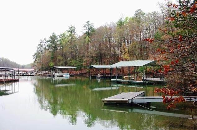 0 Calcutt Road, Lavonia, GA 30553 (MLS #20239068) :: Lake Life Realty