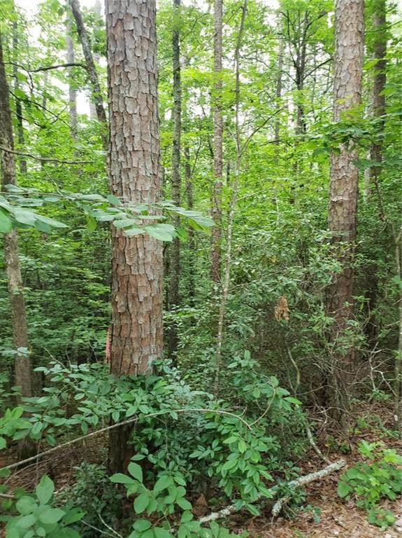 100 Mountain Top Drive, Tamassee, SC 29686 (MLS #20240719) :: The Powell Group