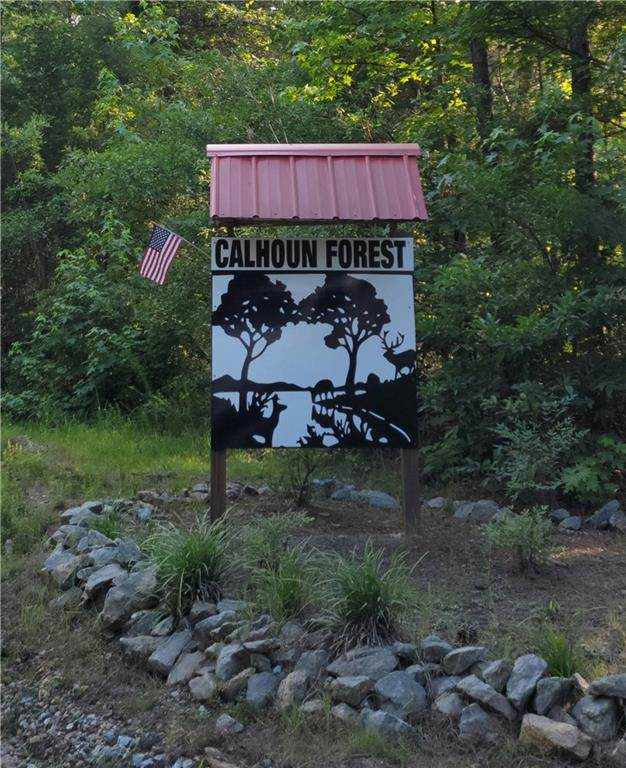 Lot 15 Lake Forest Drive, Abbeville, SC 29620 (MLS #20241355) :: The Powell Group