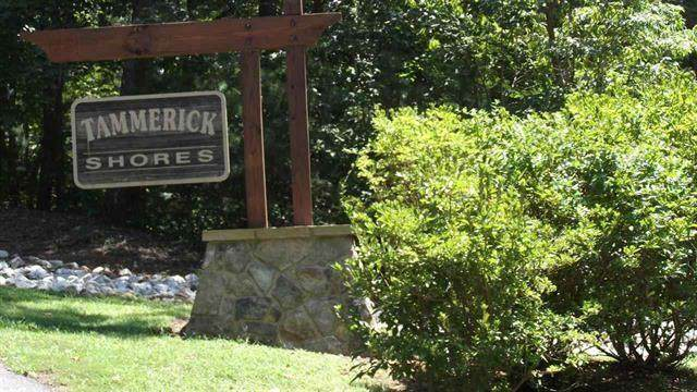 Lot 1 Tammerick Trail, Fair Play, SC 29643 (MLS #20242330) :: Tri-County Properties at KW Lake Region