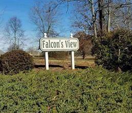 lot 19 Falcons View Drive, Walhalla, SC 29691 (MLS #20243799) :: The Freeman Group