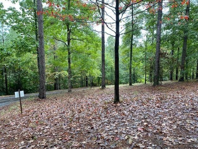 327 Long Cove Trail, Salem, SC 29676 (MLS #20244104) :: Prime Realty