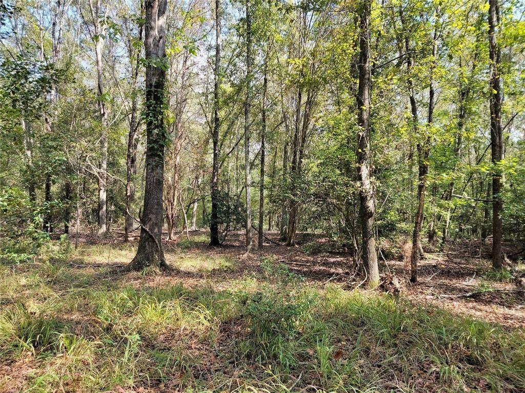 4.12 acres Robertson Road - Photo 1