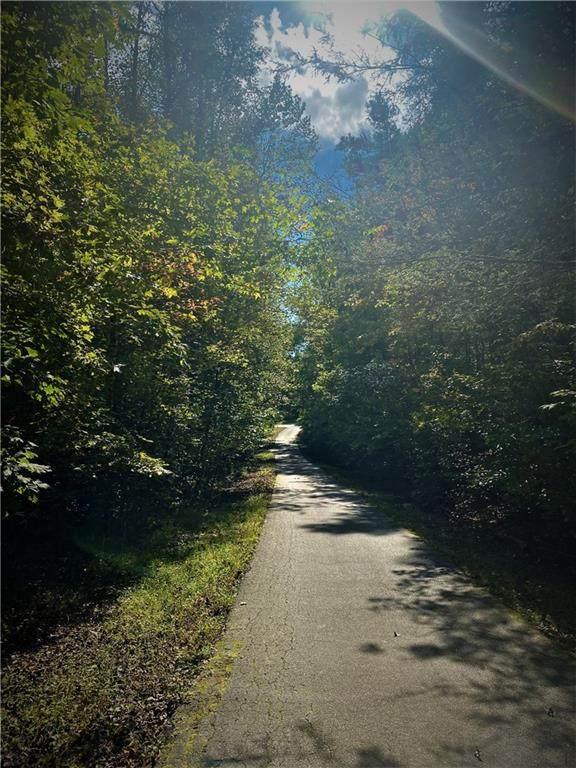 108 Willys Creek Circle, Pickens, SC 29671 (MLS #20244448) :: Renade Helton