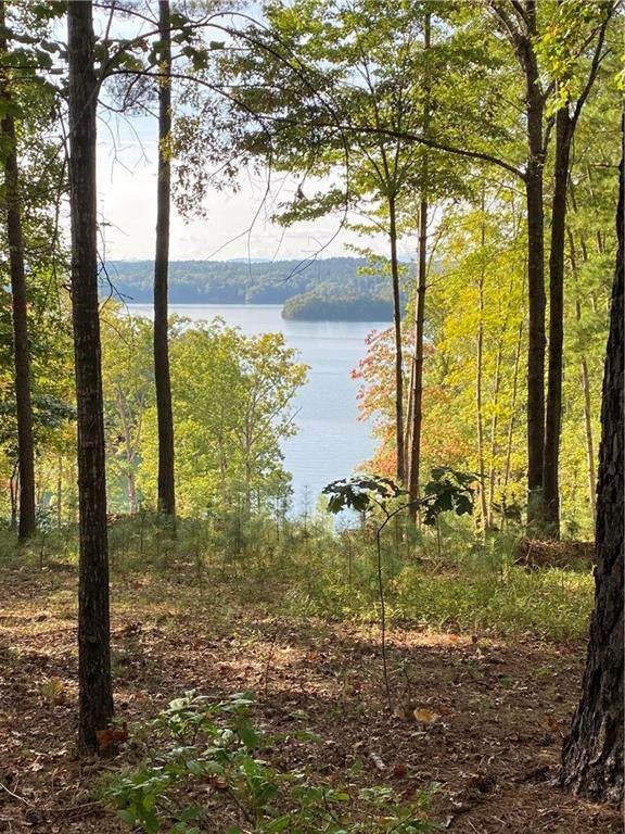 555 Leaning Pine Trail, Six Mile, SC 29682 (#20244780) :: The Robby Brady Team