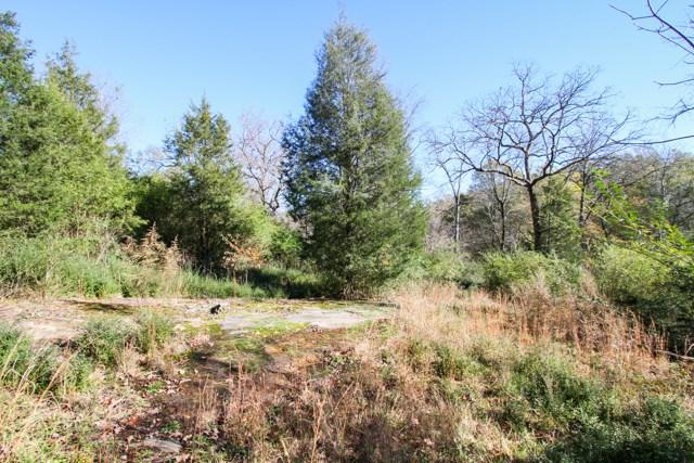 106 Tallulah Terrace, Piedmont, SC 29673 (MLS #20161238) :: Les Walden Real Estate