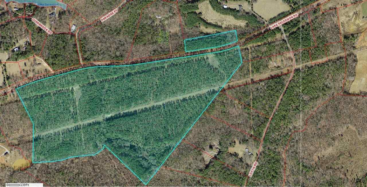 1303 Lake Secession Rd, Abbeville, SC 29620 (MLS #20169603) :: Les Walden Real Estate