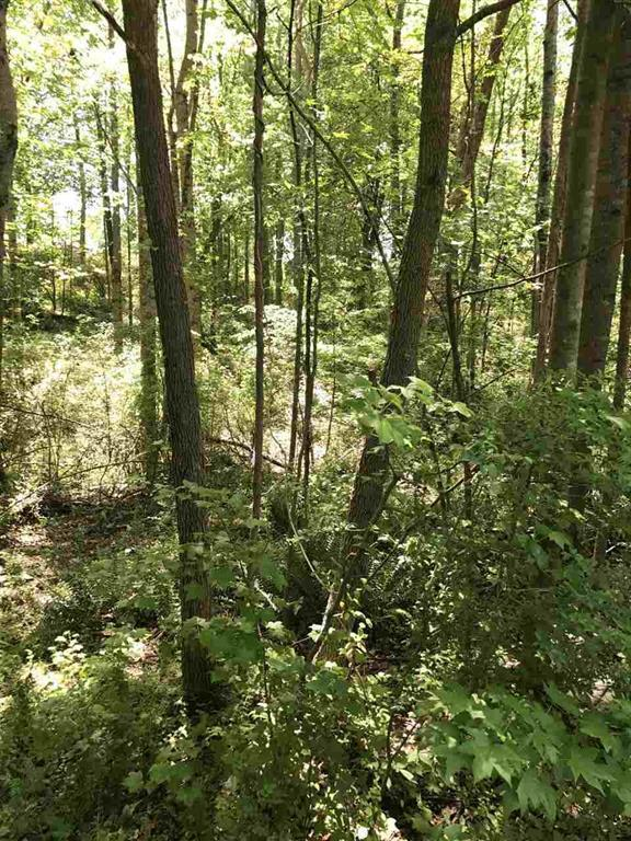 Lot 18 Brookvale Drive, Williamston, SC 29697 (MLS #20186983) :: The Powell Group