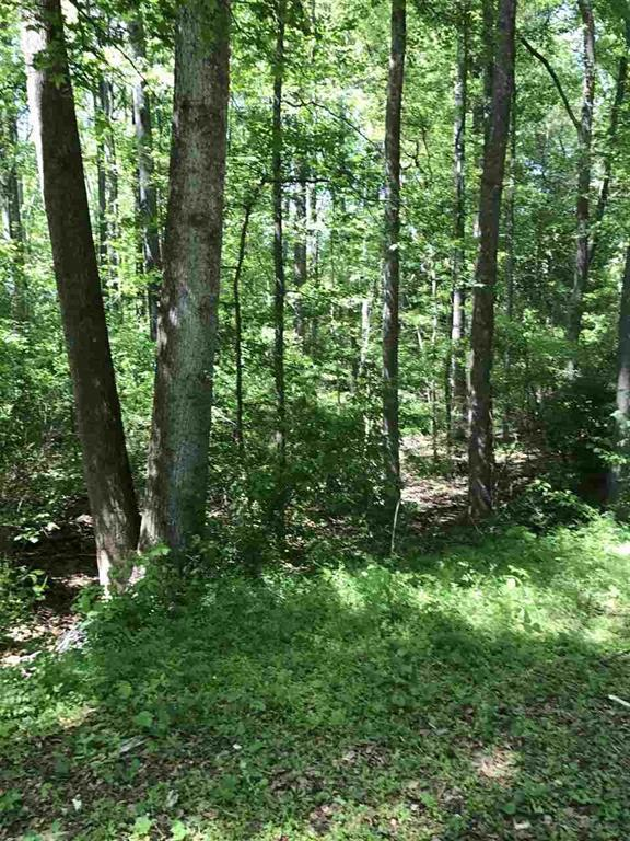 Lot 16 Saluda Road, Williamston, SC 29697 (MLS #20186987) :: The Powell Group
