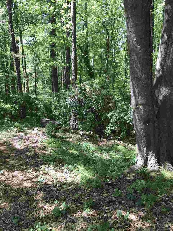 Lot 17 Saluda Road, Williamston, SC 29697 (MLS #20186988) :: The Powell Group