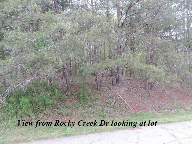 3605 Rocky Creek Drive - Photo 1