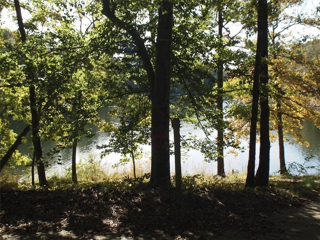 103 Falling Leaf Drive - Photo 1