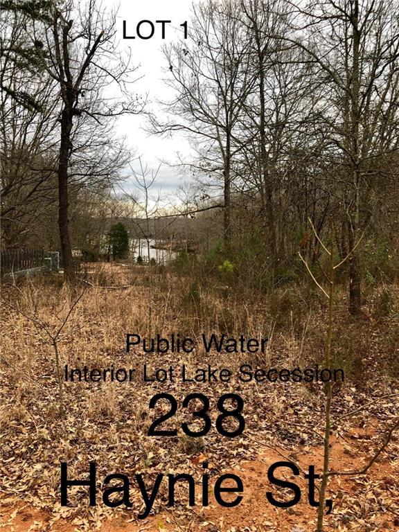 238 Haynie Avenue, Iva, SC 29655 (MLS #20209406) :: Les Walden Real Estate