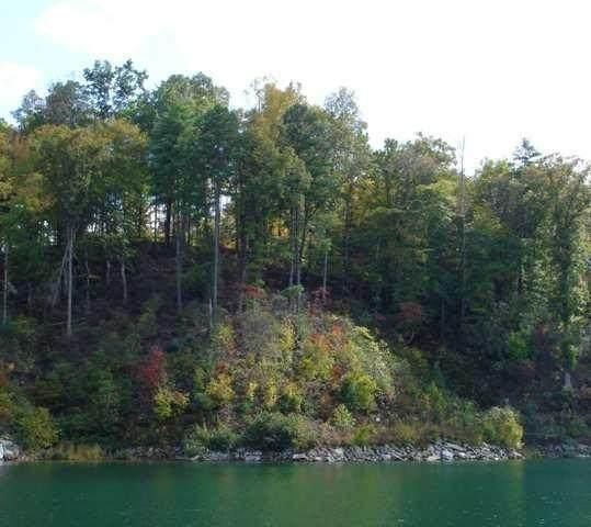 557 Shooting Tree Way - Photo 1