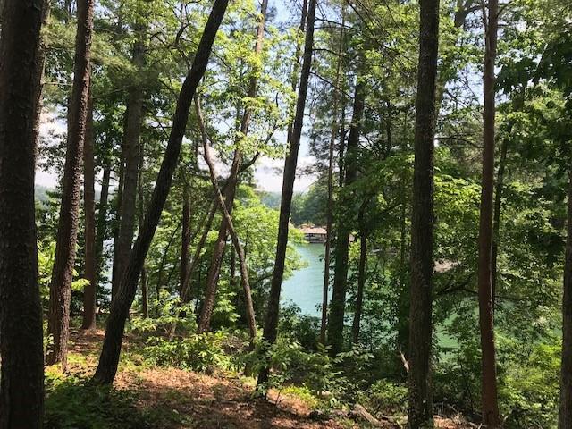 227 South Lake #Vp 20 Drive - Photo 1