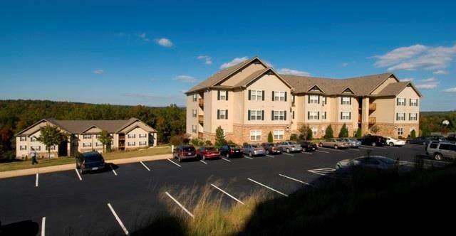 411 Harts Cove Way, Seneca, SC 29678 (MLS #20225227) :: Tri-County Properties at KW Lake Region