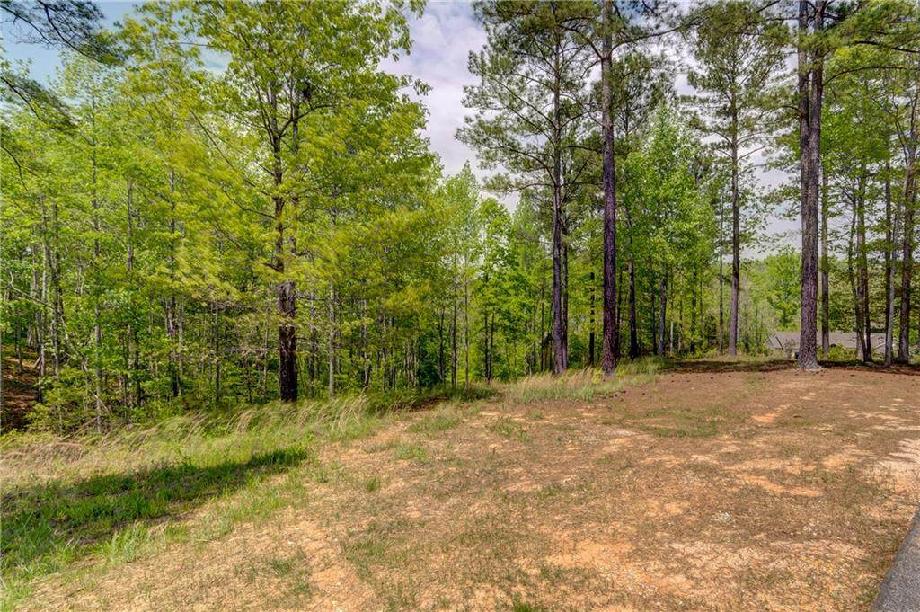248 Piney Woods Trail - Photo 1