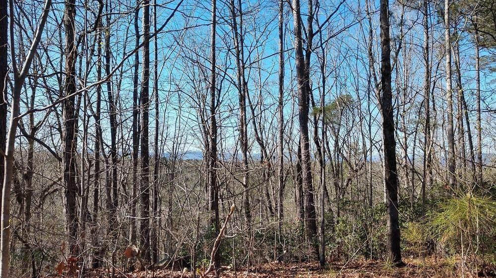 329 Long Cove Trail - Photo 1