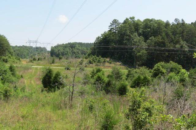 00 Cleveland Pike Rd Road, Westminster, SC 29693 (MLS #20240916) :: The Powell Group