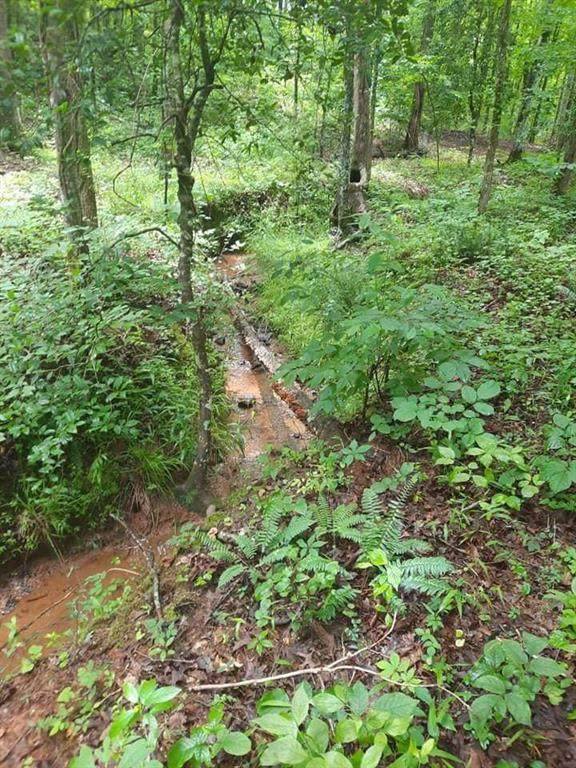 330 Falcons Nest Road, Walhalla, SC 29691 (MLS #20240936) :: Tri-County Properties at KW Lake Region