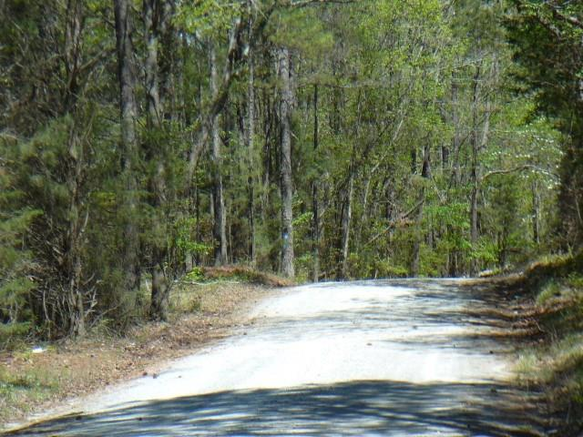 5 Acs Plantation Drive, Lowndesville, SC 29620 (MLS #20186554) :: The Powell Group