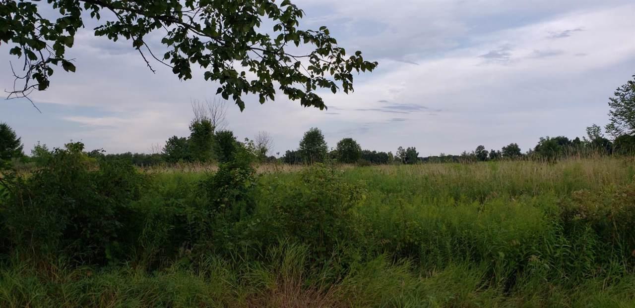 1300 Springville Highway - Photo 1