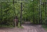 3370 Horseshoe Lake Road - Photo 12