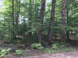 0 Racoon Trail - Photo 3