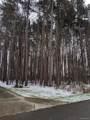 15151 Murray Woods - Photo 1